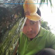 nam huong FB 4